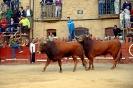 Fiestas 2012_5